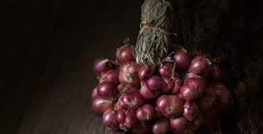 Oignons rouges 1kg ( Hérault )