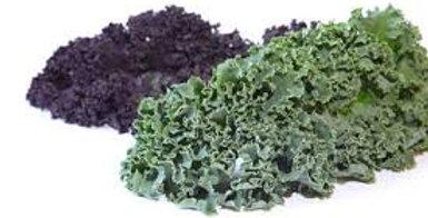 Chou kale vert 500g ( Pays de la Loire