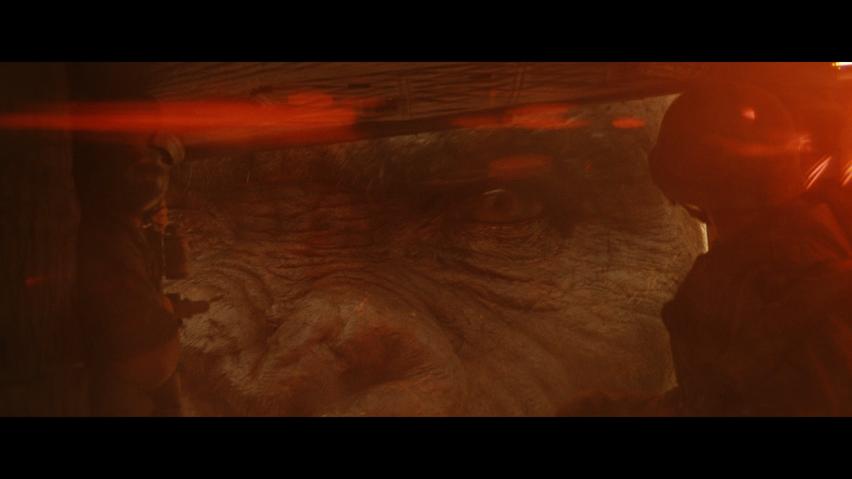 Kong: Ostrov lebek (Blu-ray)