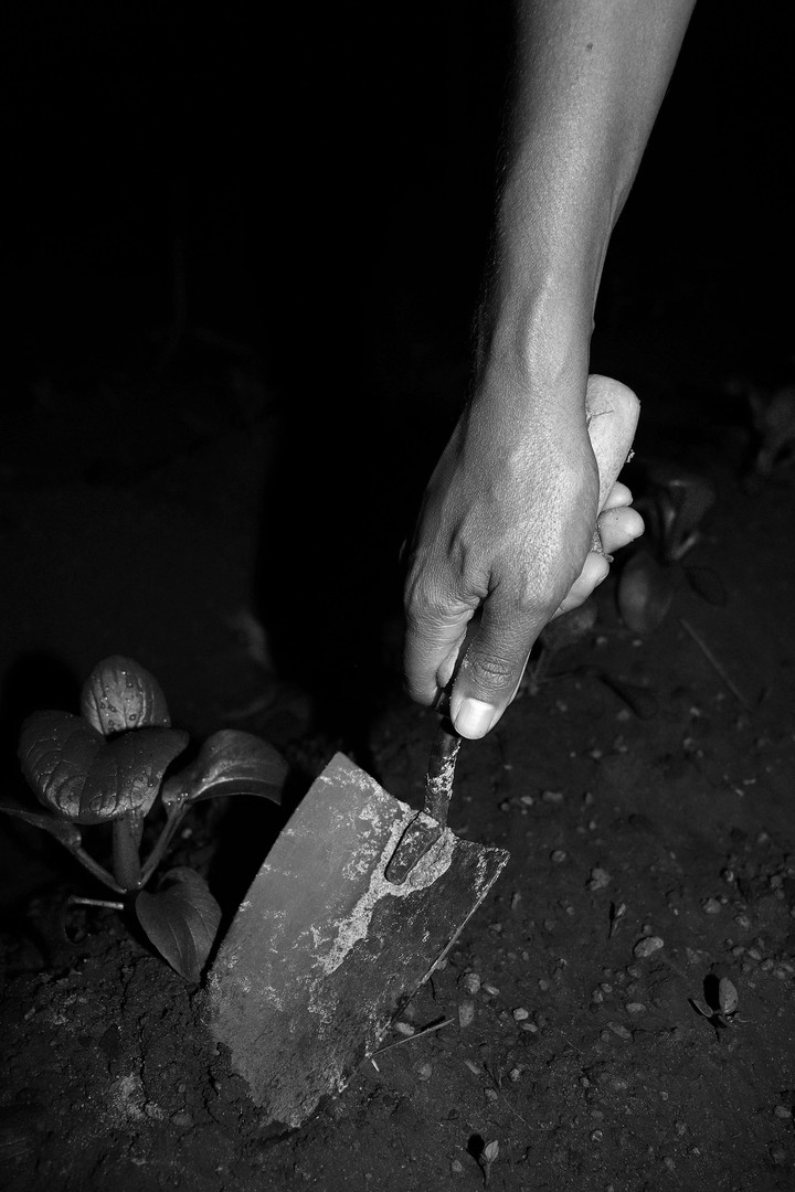 5: The hand who grew  This photograph displays the subjects hand gardening. This photograph can be taken in both a seriously and metaphorically. While it shows the viewers the subject likes to garden, it also represents her growth through time.