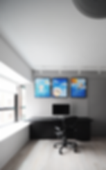 living room p.png
