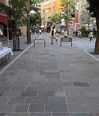 川崎チネチッタ(2015年施工)写真 (3).jpg