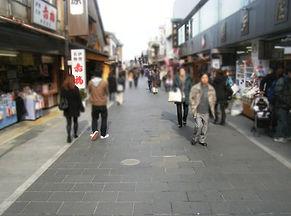 cns_oharaidori01.jpg