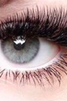 NovaLash Volume Eyelash Extensions