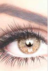 Eyelash Extensions | Microblading Training | United States | The