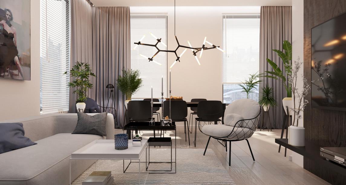 Dining / Living Room