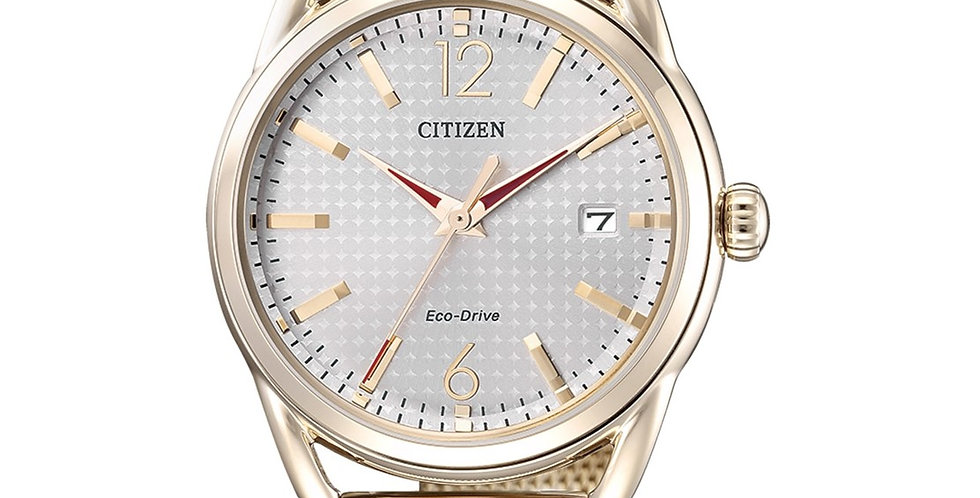 Citizen Eco-Drive FE6089-84A