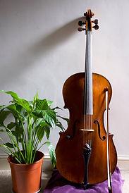 Cello pic.jpg