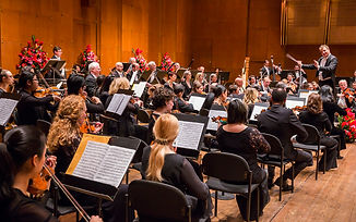 Strauss Symphony of America featuring the Chicago Philharmonic