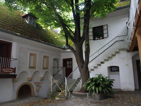 Strolling Vienna