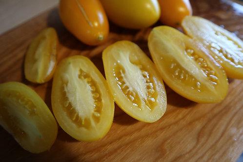 Золотой петушок томат