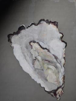"""""""Oyster""""(board)-8x10"""""""