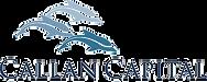 Callan Logo (2)_edited.png