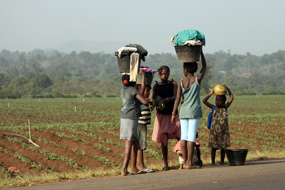 Africa's Youthful Majority & How Population Growth Can Be Utilized for Employment & Innovati