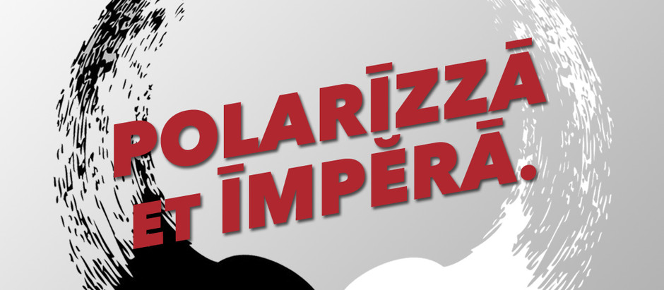 Polarizza et Impera: DDL Zan, Fedez e disinformazione social.