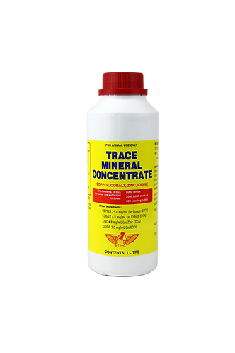 Trace Mineral Concentrate bottle. Copper, cobalt, zinc and iodine trace element supplementation for cattle, sheep and goats.