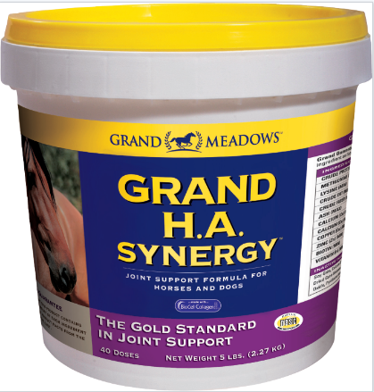Grand Meadows Grand H.A. Synergy pot. Top of the range joint supplement for horses. Glucosamine, collagen, chondroitin, MSM