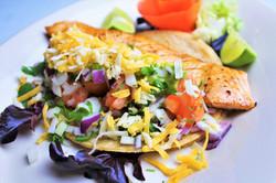 Garcia's Salmon Tacos