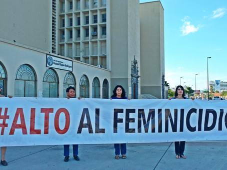 Secretaría de Gobernación debe declarar la Alerta de Género para Sonora: OCNF