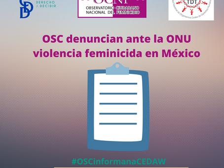 COMUNICADO |OSC denuncian ante la ONU violencia feminicida en México.