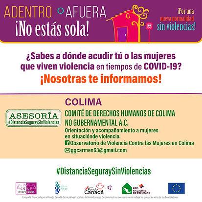 DIR_COLIMA_ASESORIA.jpg