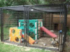 Lemur, Owning a Lemur, Lemur Care, Lemur Habitat, Lemur Home, Lemur Pet, Lemur Breeder