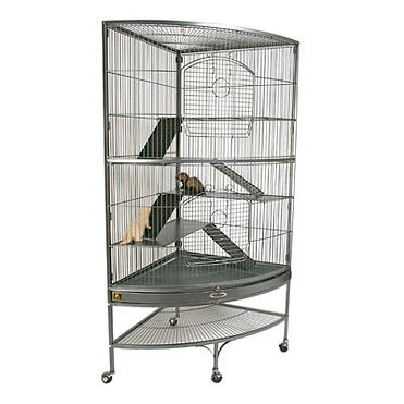 Black Tailed Prairie Dog Cage, Prairie Dog Breeder, Prairie Dog Care, Prairie Dog Habitat, Prairie Dog Care