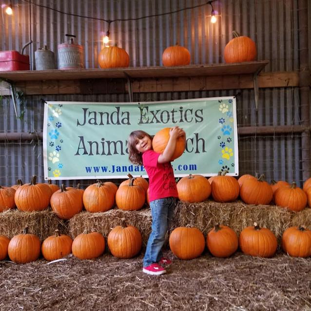 Janda Exotics