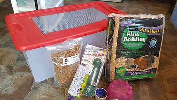 Hedgehog Home, Hedgehog setup, How to care for a hedgehog, Hedgehog Habitat, Hedgehog bedding
