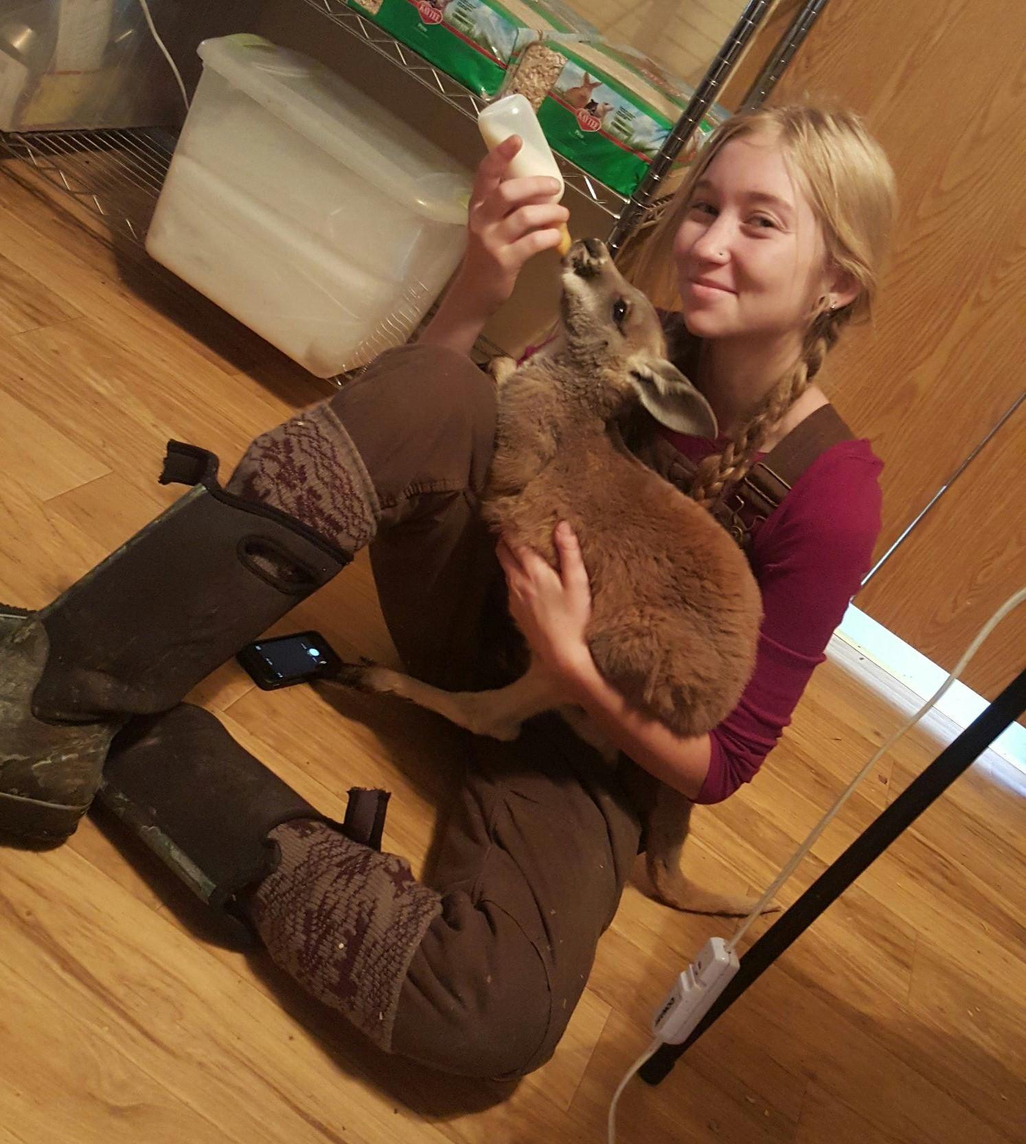 Bottle Baby Kangaroo- Cuddle Cabin