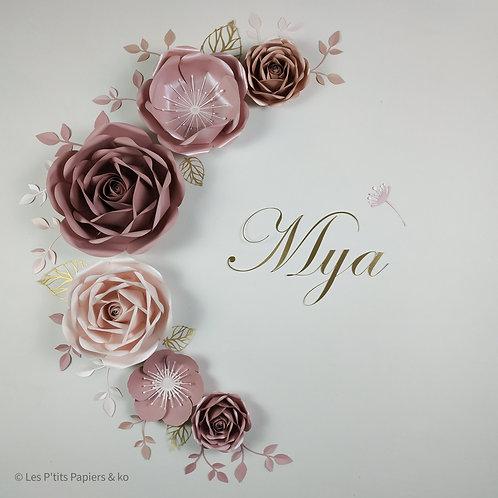 Composition Mya