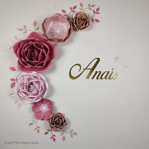 Composition Anaïs
