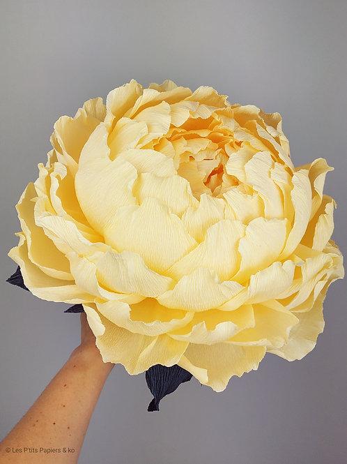 Pivoine en bouquet