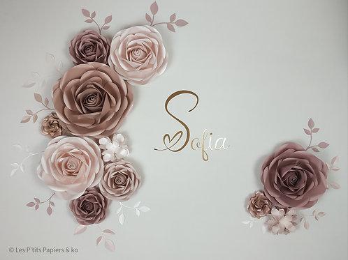 Composition Sofia