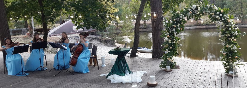 Украшение выездной церемонии в лесном стиле Киев
