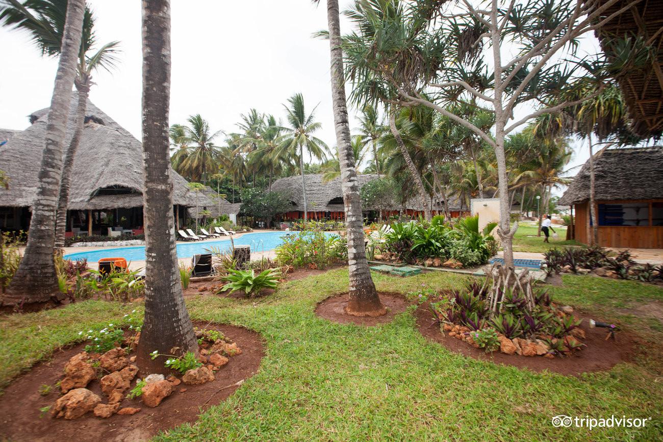 pool--v5892624.jpg