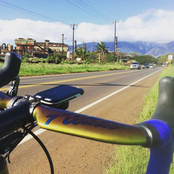 #alohacrux in the #alohastate. Welcome to #hawaii buddy.jpg