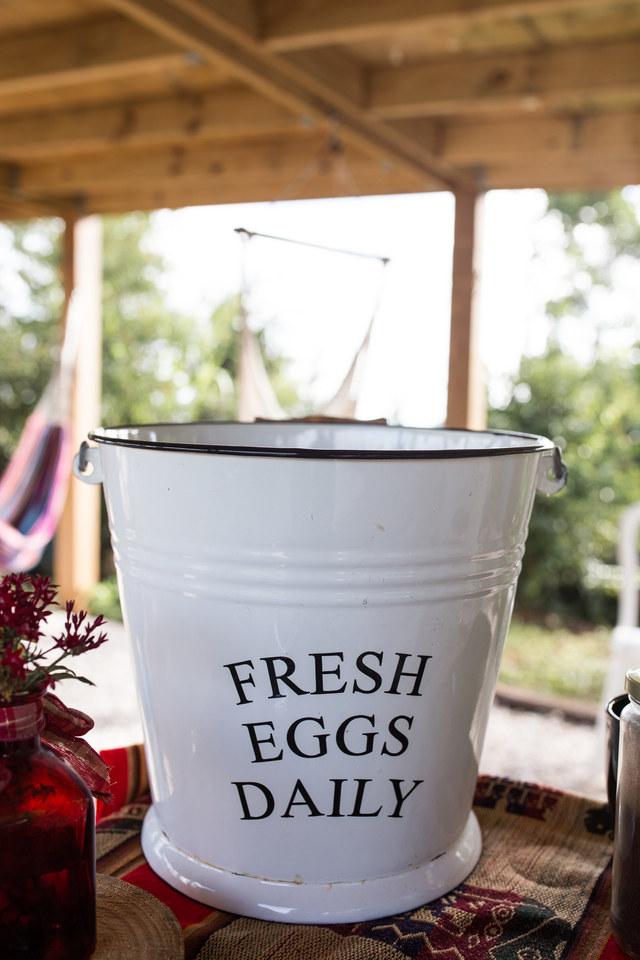 Daily eggs shared , Fresh!