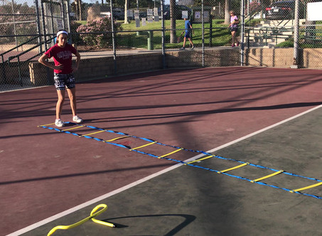 Combination Ladder, Cone and Hurdles Workout