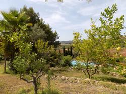 View Establiments property