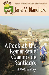 A Peek at the Remarkable Camino de Santiago