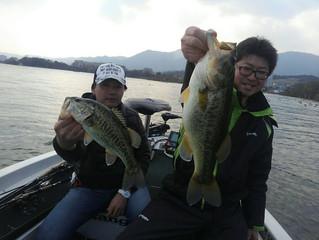 太い魚釣れてます