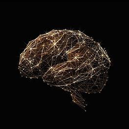 HOME-brain-Inner-Universe-Psychology-BLA