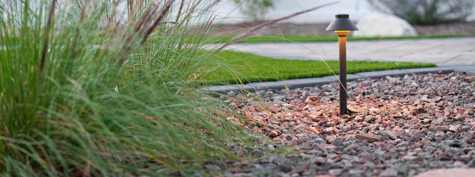 Plants and backyard lighting