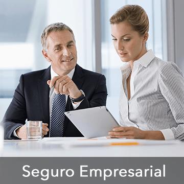 Seguro-Empresarial-360x360(1)