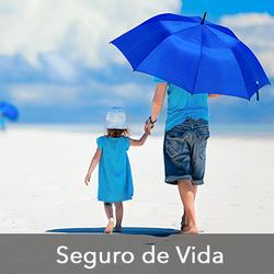 Seguro-Vida-360x360(1)