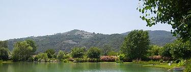 Lac en été.jpg