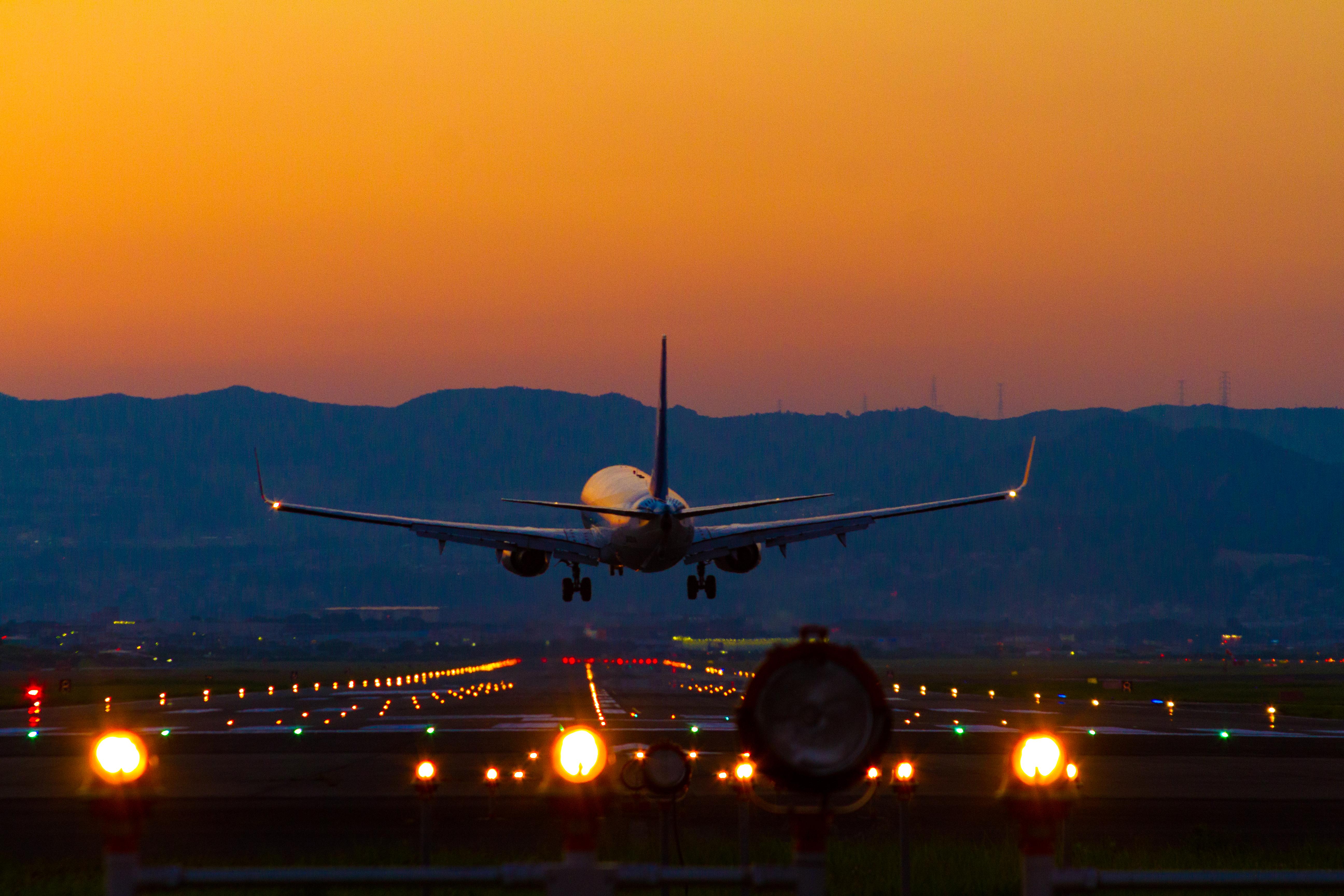 金色の空、金色の機体