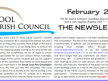 `Parish Council Newsletter for February 2021