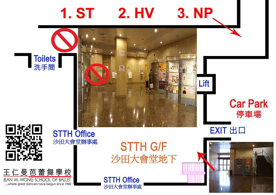 STTH-G-F.jpg